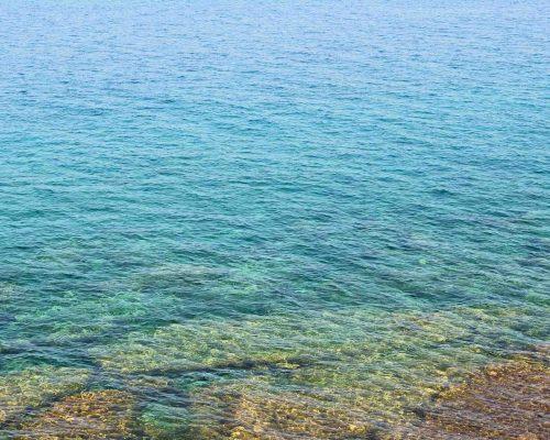 Montfort Oakville Mediterranean Cuisine - sea